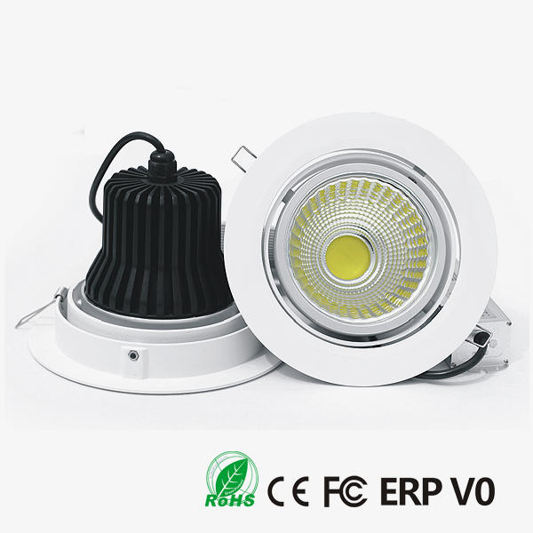 D30170 COB LED Downlight