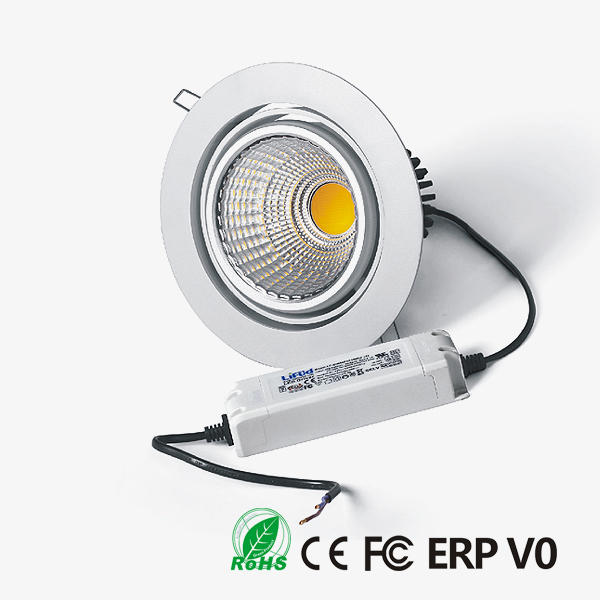 D20170 COB LED Downlight